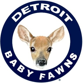 After various team members were slain by live tigers, Detroit changes team name