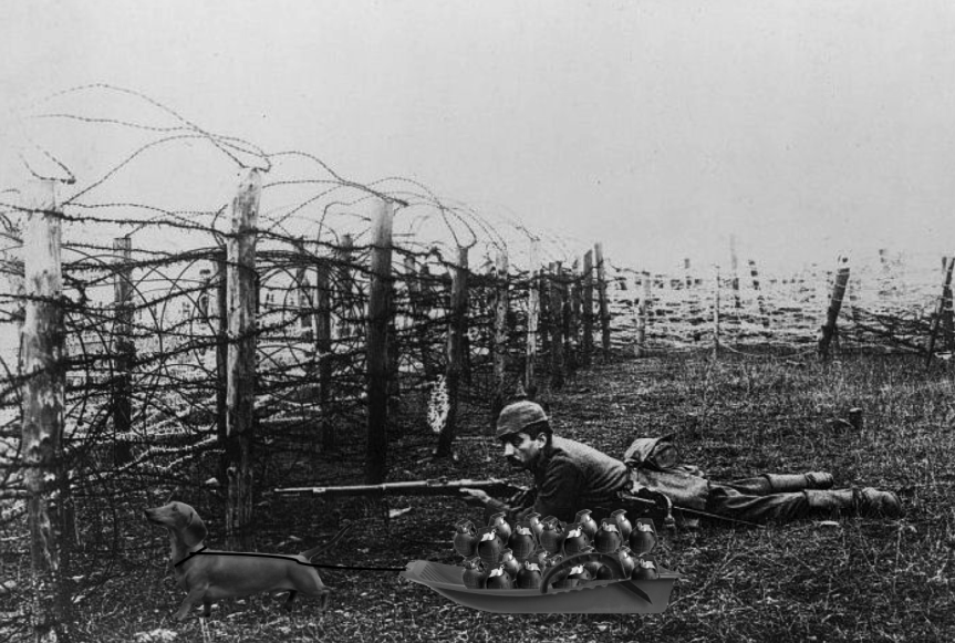 Tan 4-year old dachshund Sassy pulls a sled full of live grenades under a barbed wire fence while a German soldier provides sniper cover. via historyplace.com, a4c.com, petwave.com, amazon.com